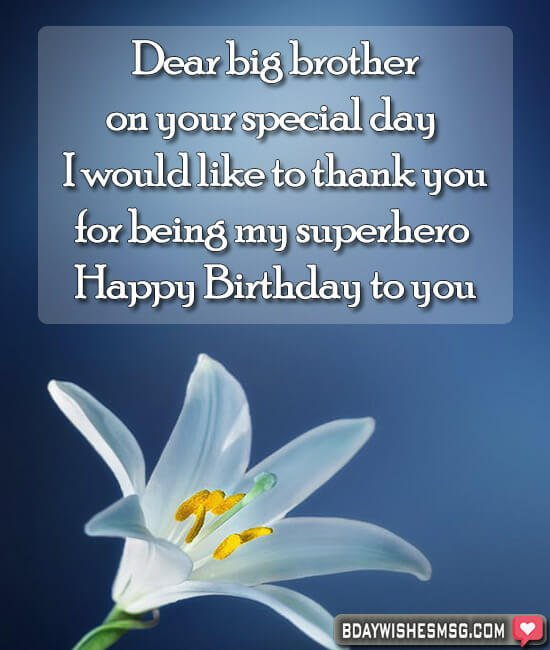 Dear big brother, on your special day I would like to thank you for being my superhero. Happy Birthday to you!